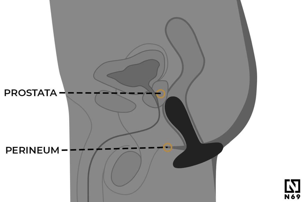 masaz-prostaty-rysunek