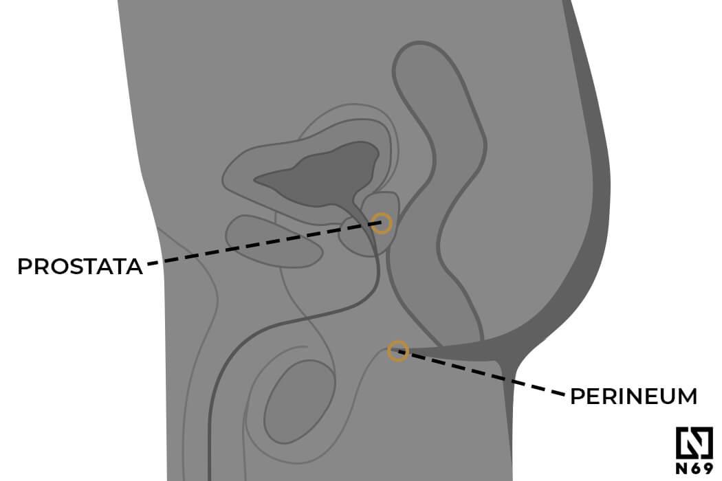 z masażem prostaty nie ma erekcji)